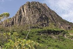 O Barron Gorge National Park, perto de Cairns, oferece algumas das melhores paisagens de floresta tropical
