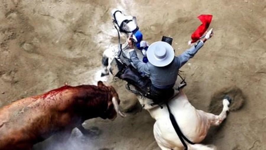 Proibição da touradas tinha sido aprovada em 2010 pela Catalunha