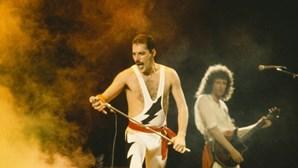 Freddie Mercury morreu há 25 anos