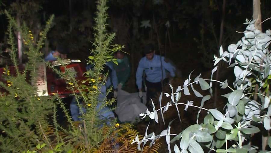 Corpo em decomposição estava escondido no mato
