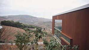 Casas de campo vila Marim em pleno Douro vinhateiro