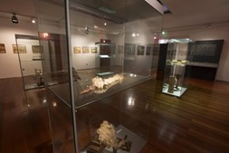Museu de História e Etnologia da Terra da Maia possui várias exposições