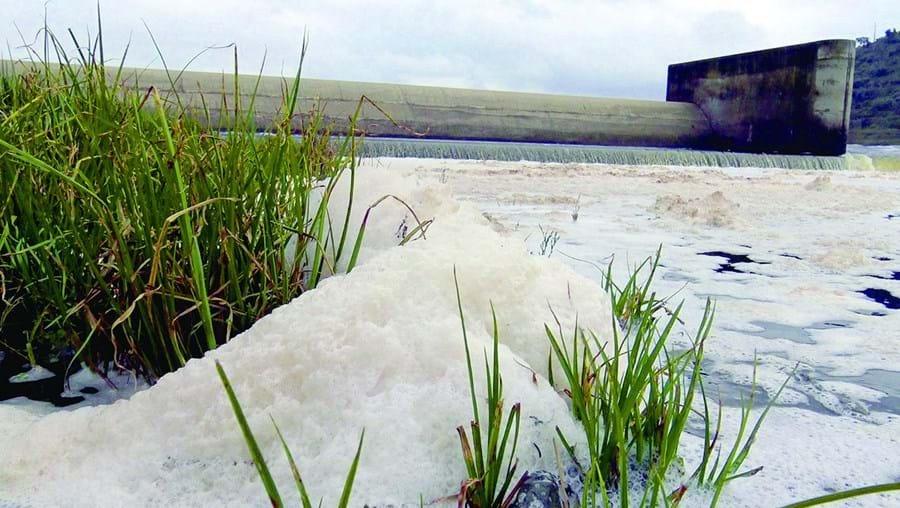 A descarga poluente encheu o rio Tejo de espuma no açude de Abrantes