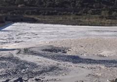Espuma cobre as águas o Tejo na zona de Abrantes