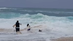 Criança de 8 anos quase se afoga em águas do Havai