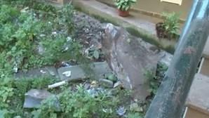 Derrocada destrói prédio habitado na Madeira