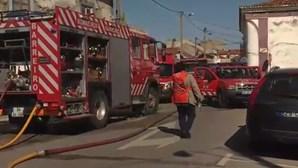 13 crianças feridas em fogo junto a escola