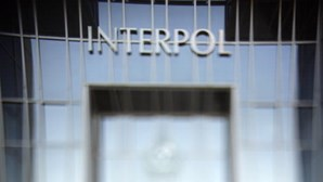 Interpol deteve 585 pessoas na Ásia acusadas de fraudes através da internet
