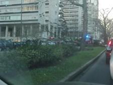 Avenida dos Estados Unidos da América, Avenida Gago Coutinho, queda árvore, Lisboa