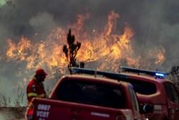 Incêndio em setembro do ano passado consumiu milhares de hectares de mato e floresta de Monchique e Portimão
