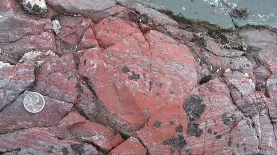 Descobertos fósseis com 3,77 mil milhões de anos