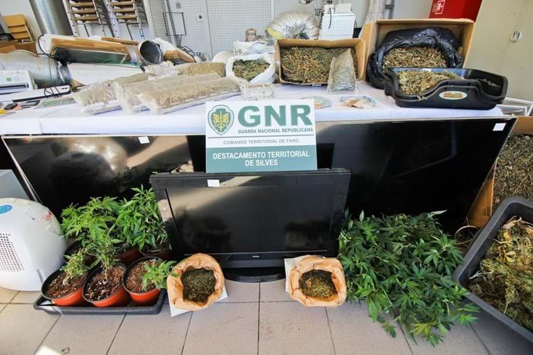 Militares apreenderam droga na Galé, onde suspeitos viviam, e em Tunes, Silves, num terreno agrícola