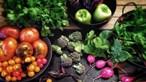 Conheça as várias tendências da alimentação vegetariana