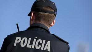 Adepto turco do Galatasaray detido por agredir agente da PSP em Lisboa