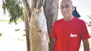 Pescador apanhou corvina de 27 quilos