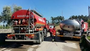 Incêndio em Águeda e Anadia está dominado