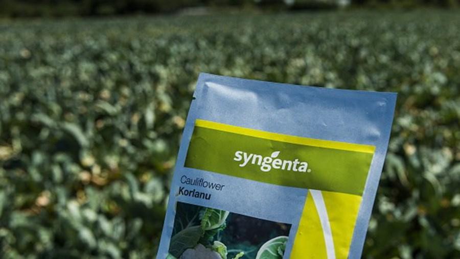 A Syngenta é uma empresa suíça que fabrica sementes, herbicidas, adubos e outros produtos do ramo agro-alimentar