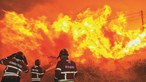 27 concelhos de cinco distritos em risco muito elevado de incêndio