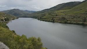 Porto e Gaia anunciam construção de ponte sobre o Douro