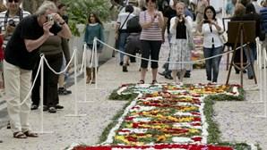 Mais de 75 mil visitaram pavilhões da Festa da Flor da Madeira