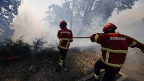 Distritos de Santarém e Faro em alerta vermelho para risco de incêndios