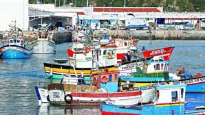 Pesca acusa ministério de falta de capacidade