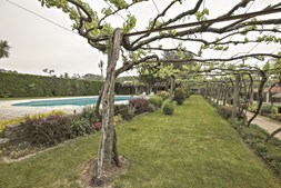 A Quinta de Maderne é um dos locais onde pode apreciar os vinhos verdes da região