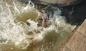 Criança a afundar-se, enquanto os turistas gritam