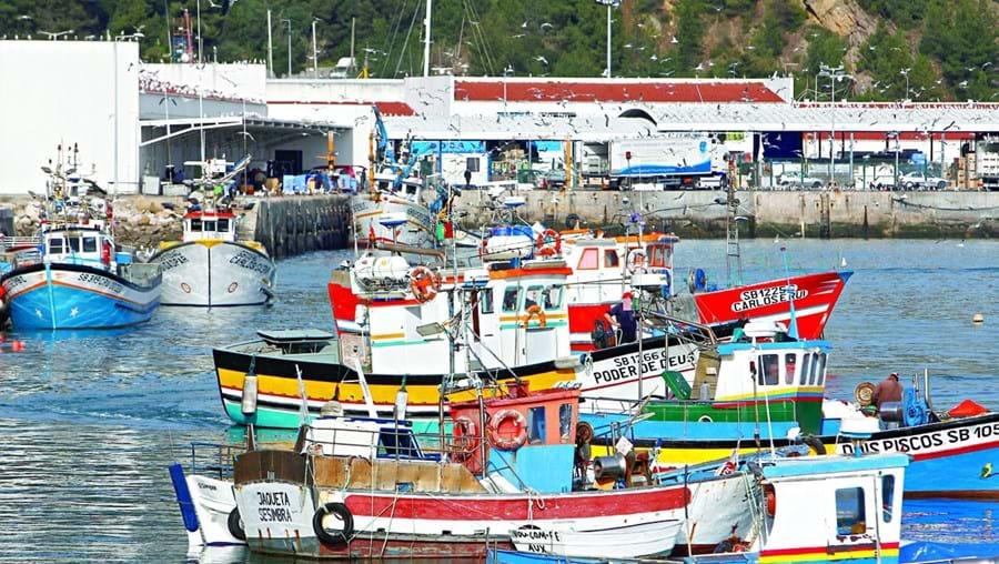 Pescadores contestam alterações e acusam direção-geral de não ter capacidades para acumular competências