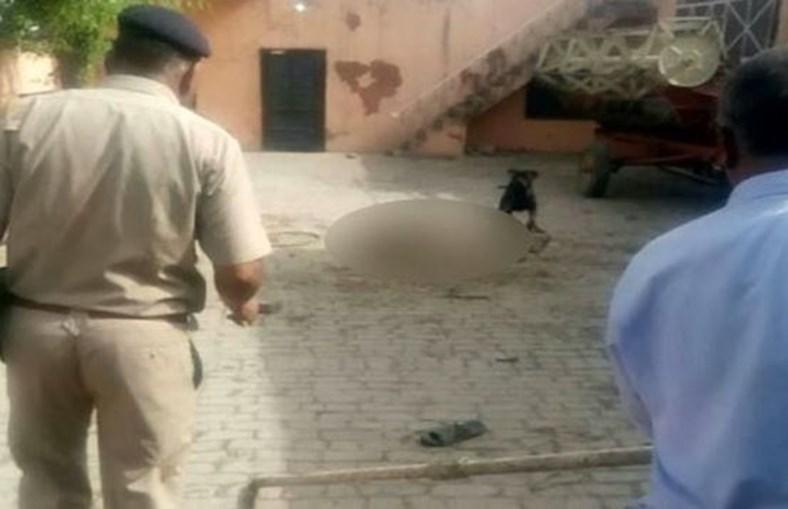 Polícia e populares encurralaram o cão com recurso a varas e pedras. O rottweiler matou o dono e comeu a carne durante uma hora