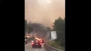Vídeo amador mostra fogo a atravessar IC8