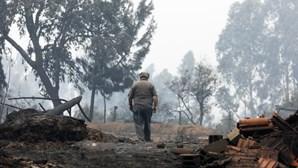 Violência das chamas deixou rasto de destruição