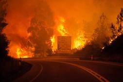 Mais de 500 bombeiros estão a combater as chamas