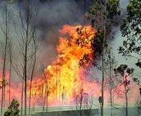 As chamas estavam ontem incontroláveis numa das várias frentes ativas, junto ao IC8, cortado ao trânsito