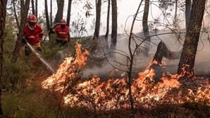 Fogo da Sertã lavra em zona de mato sem ameaçar habitações