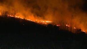 Reacendimento de fogo em Mangualde assusta população