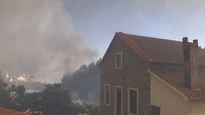 Chamas ameaçam casas na Sertã