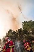 Bombeiros combatem fogos em Mação, Sertã, Proença-a-Nova e Castelo Branco