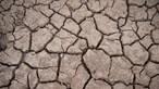 Alerta ambiental: Seca e fogos ameaçam Portugal