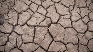 Seca afeta sul de África e coloca 45 milhões de pessoas sob ameaça de fome