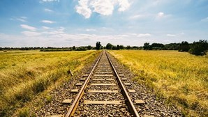 Circulação ferroviária na Linha da Beira Alta já foi retomada