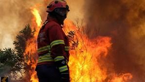 """Madeira vai """"equacionar"""" permanência de meio aéreo para combate a fogos florestais todo o ano"""