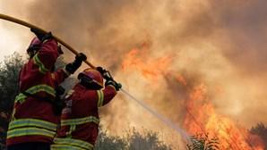 Trinta e cinco concelhos de oito distritos em risco máximo de incêndio esta terça-feira