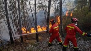 """Dispositivo de combate a incêndios conta com """"maior número de sempre"""" de operacionais este ano"""