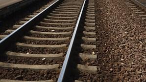 Linha do Norte interrompida em ambos os sentidos após abalroamento de veículo