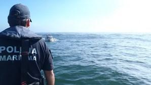 Polícia Marítima apreende 245 quilos de peixe no Porto de Leixões