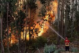 Bombeiros incansáveis no combate aos fogos