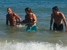 Um dos elementos da equipa de salvamento retira o golfinho já sem vida da água
