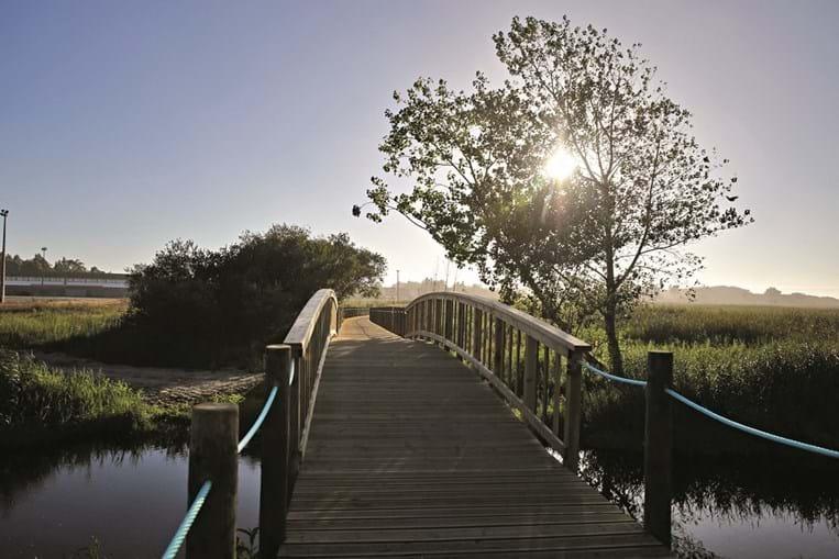 Lagoa de Paramos um tem enorme interesse ecológico e recreativo