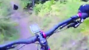 Ciclista cai ao ver intruso na estrada